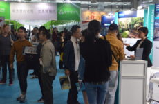 China Education Expo 2016