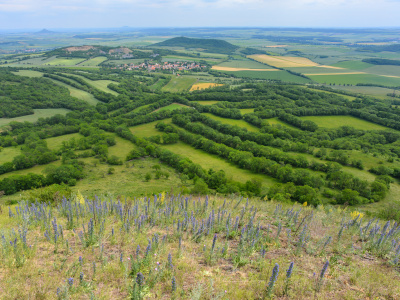 Vernacular historic landscapes of Europe and their preservation within a sustainable landscape